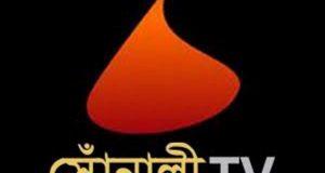 সোঁনালী টিভি