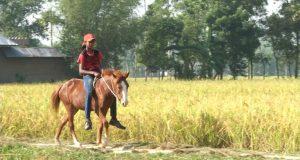 TASMINA THE HORSE GIRL: selected for screening on 21st February in Spain