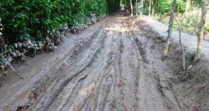 রামগতির পৌরসভার চার সড়ক বেহাল: জনদুর্ভোগ