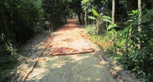 এলজিইডি'র নাকের ডগায় নিন্মমানের ইটে রাস্তা নির্মান