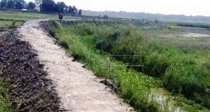 জাজিরায় স্বেচ্ছাশ্রমে রাস্তা নির্মাণ করে অনন্য নজির