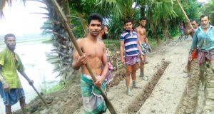 ইন্দুরকানীতে স্বেচ্ছাশ্রমে সড়ক নির্মাণ